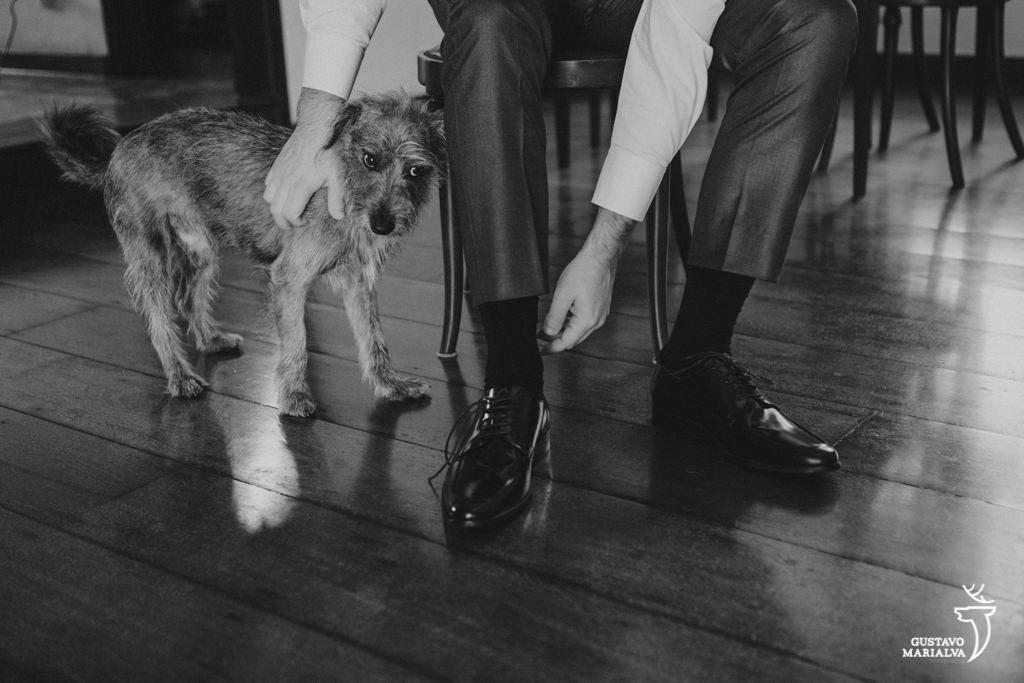 noivo brincando com cachorro no making of do casamento