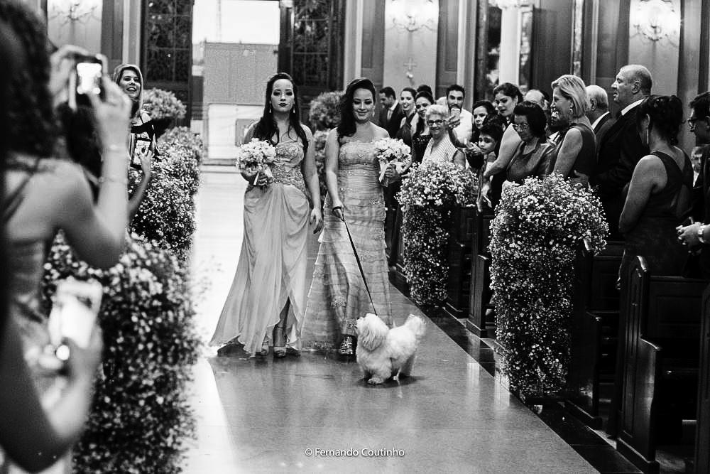 momento da entrada das damas de honra e pajens no casamento acompanhada do mascote da familia um caozinho lindo que encantou a todos no casamento