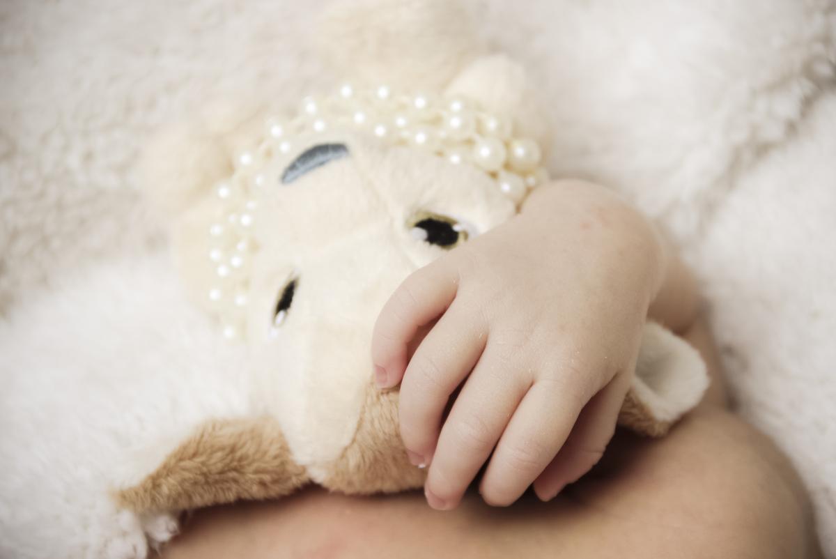 Fotos newborn em estúdio, fotos estúdio ivna sá em belo horizonte, recém-nascido, newborn de roupa rosa, ursinho, fotos no cestinho, fotos em bh, ivna sá produção fotográfica, ivna sá fotograf
