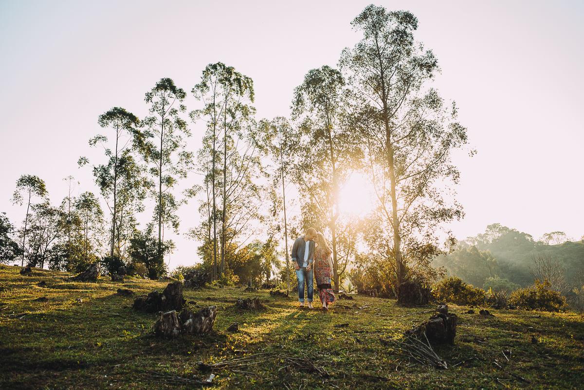 Ensaio de casal maravilhoso iluminado pelos raios de sol entre os eucaliptos no campo
