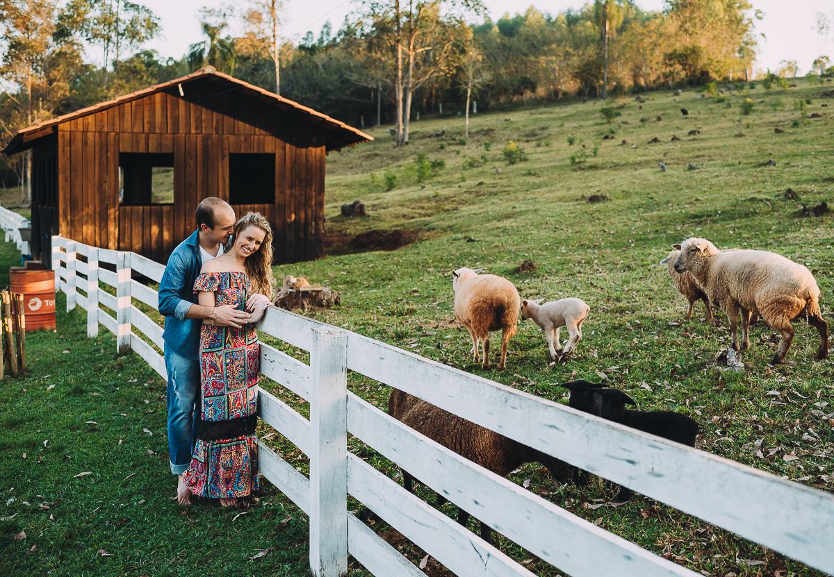 Ensaio romântico de casal junto com ovelhas no campo no interior do RS