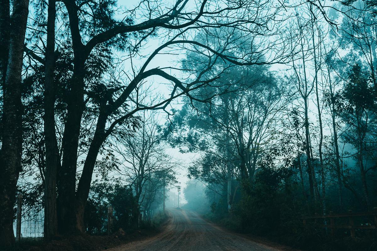 neblina presente na paisagem de inverno no interior do Vale do Taquari