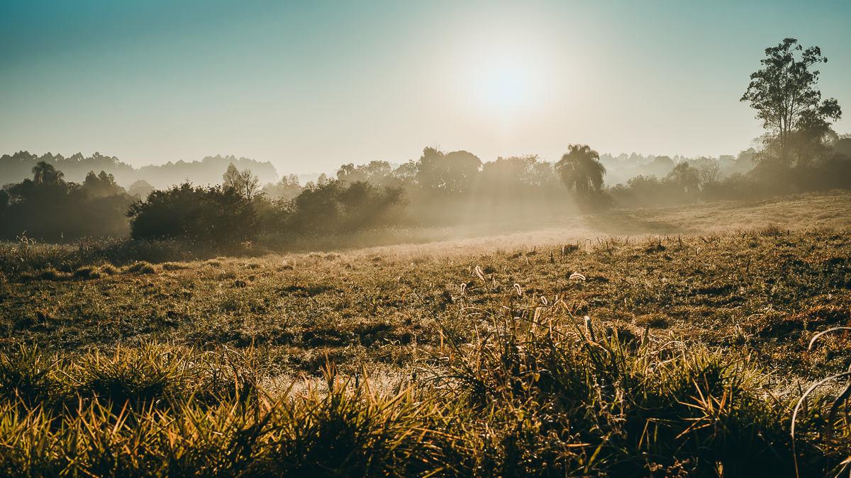 Raios de sol sobre o campo no amahecer