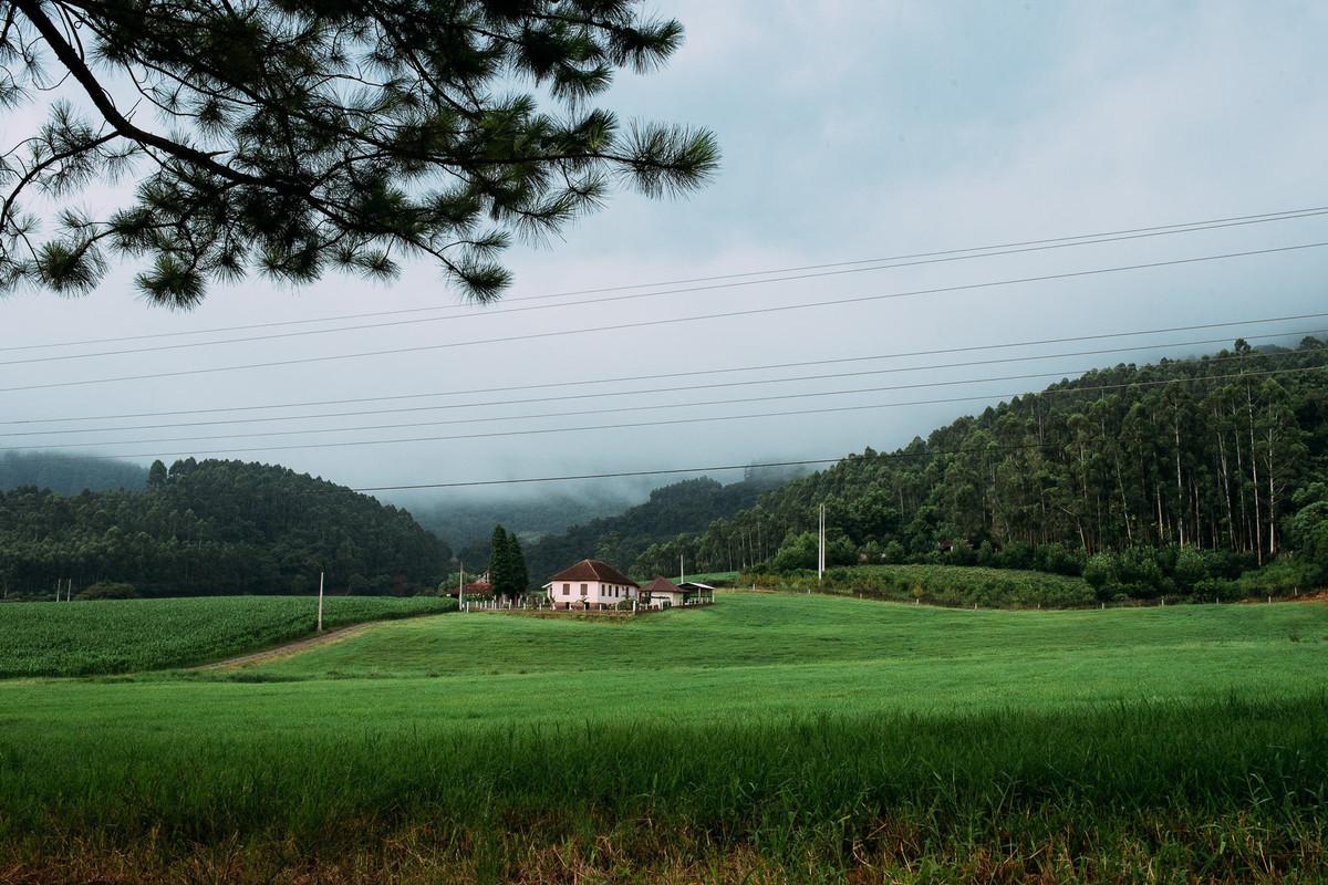 verdes campos em dia nublado no interior de Teutonia na Linha Frank