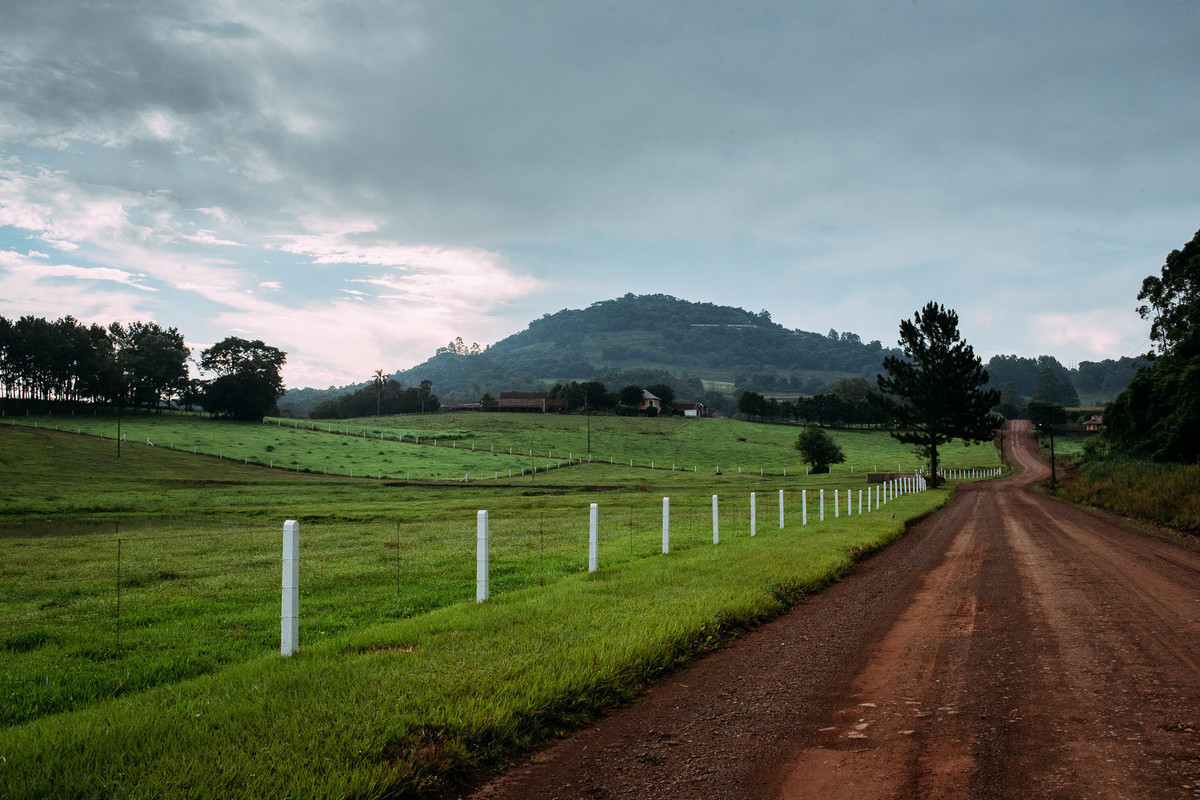 Brazilian countryside green landscapes