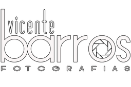 Logotipo de VICENTE BARROS