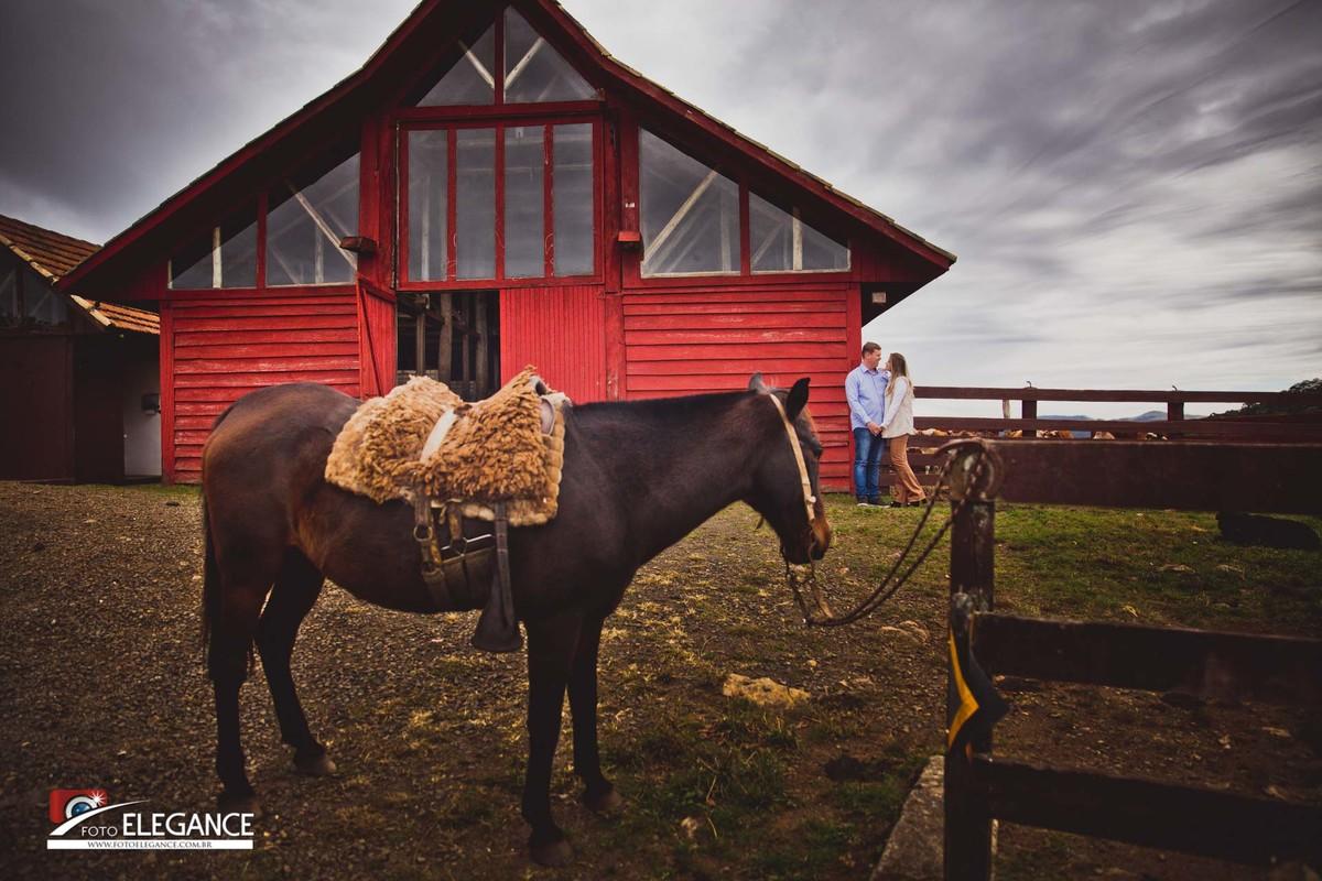 book com cavalo
