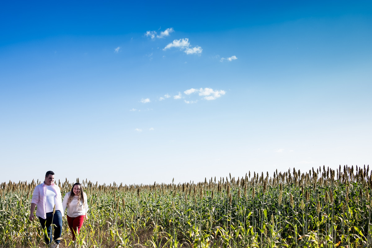 Noivos no meio da paisagem linda de holambra-sp.