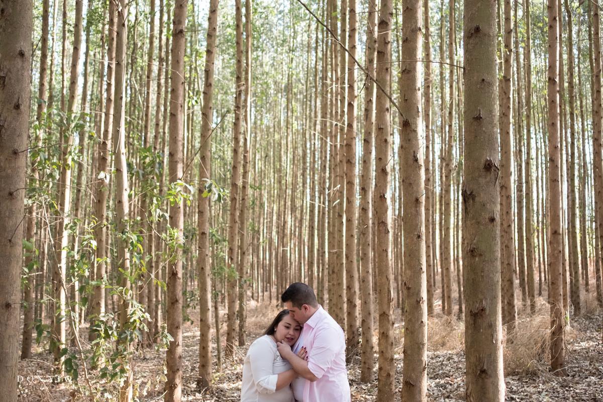 noivos no meio dos eucaliptos, em Holambra sp. Foto feita em Holambra.