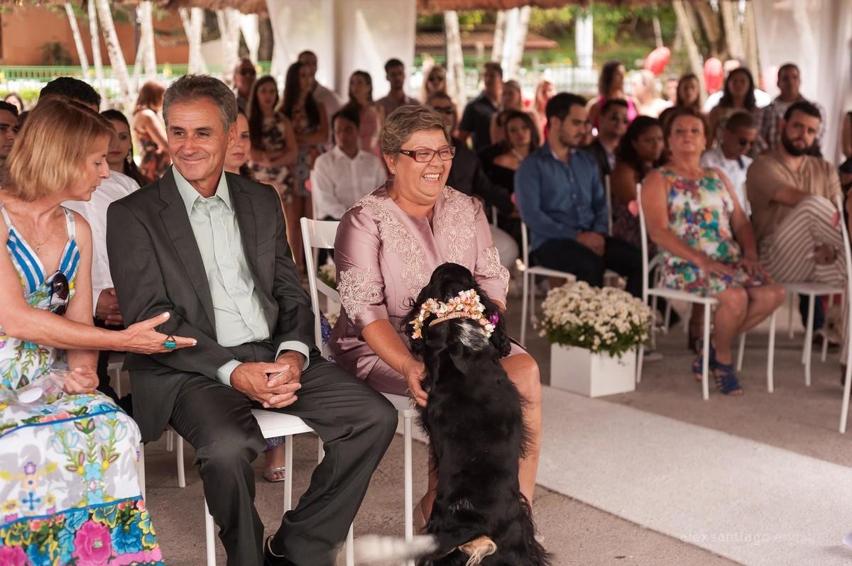fotógrafo de casamento angra dos reis, fotógrafo de casamento paraty, casamento com cachorros, cachorros no casamento, casamento na ilha, casamento ilha kabuki
