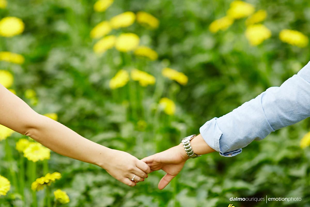 pre wedding em holambra; ensaio de casal em holambra; ensaio em holambra; fotografia de casal; pre wedding; holambra; onde fazer o ensaio de casal; campo florido; ensaio de casal no meio das flores