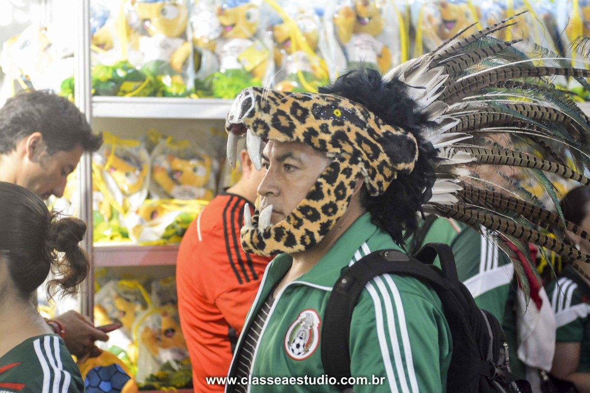 A Copa do Mundo de 2014 foi no Brasil, e a emoção correu solta pelo país afora, em cada jogo, mexendo com toda a população brasileira e mundial que foi curtir os jogos das seleções. Neste álbum, pode