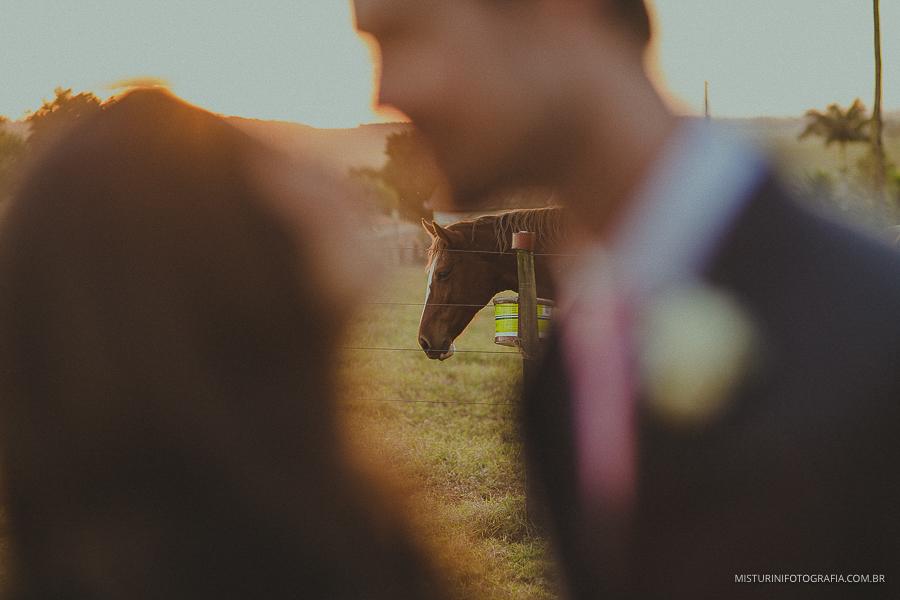 o beijo e o cavalo