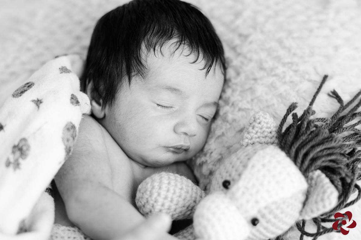 Foto em preto e branco do bebê Henrique dormindo, tapado com uma fralda de pano, abraçado em um cavalo feito de crochê,