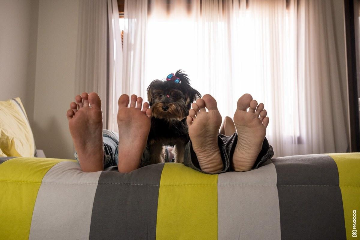 ensaio casal, ensaio fotográfico, amor, lajeado, casa nova, ensaio casa nova, pés, yorkshire, cama