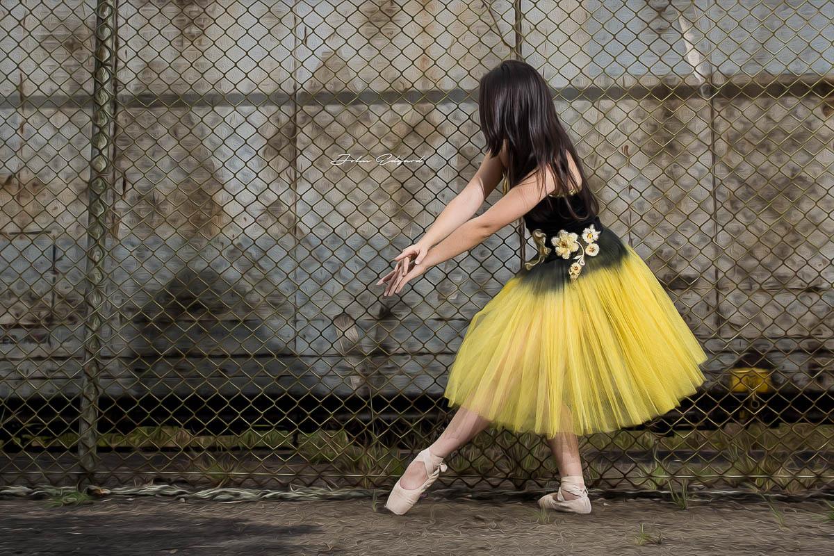 fotografia 15 anos em sp fotografo de 15 anos tatuapé fotos paranapiacaba book fotográfico fotos bailarina