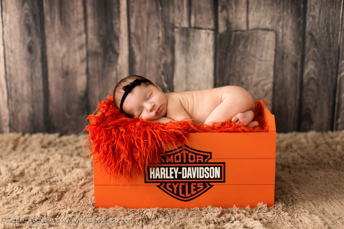 harley-davidson ensaio newborn