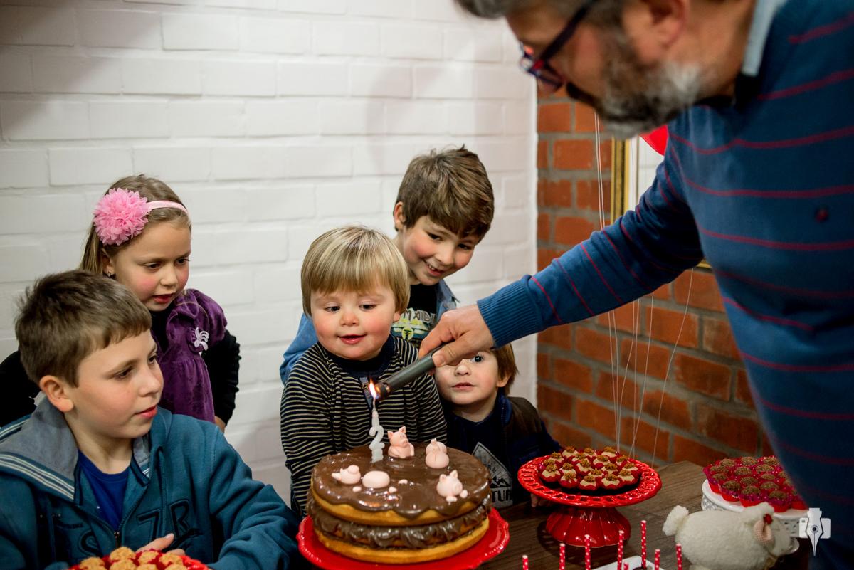 aniversario infantil decoração de bixos porco