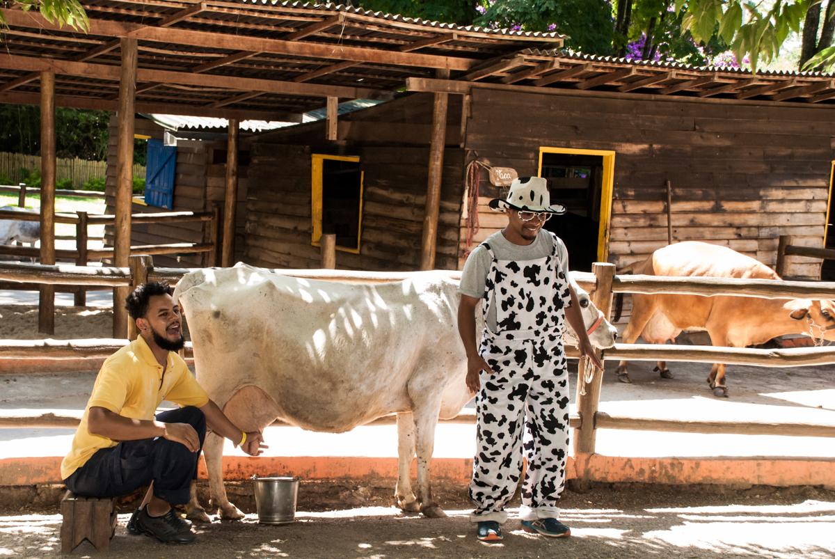 show com a vaquinha no Buffet Pet Zoo, Cotia, São Paulo, aniversário de Maria Clara 4 anos, Buffet Pet Zoo, Cotia, São Paulo, tema da festa Dora a Aventureira