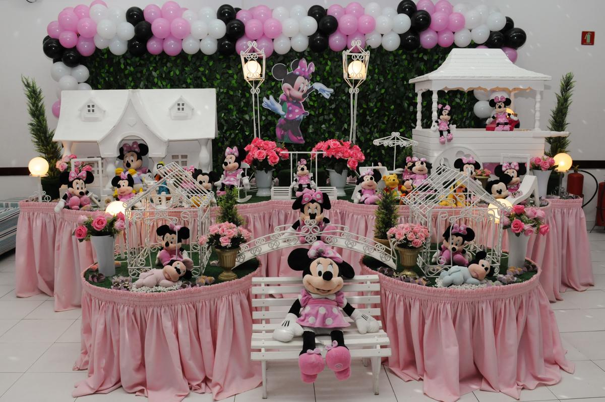 tema minie rosa no Buffet Infantil Anarquia Park, Moema, São Paulo, SP