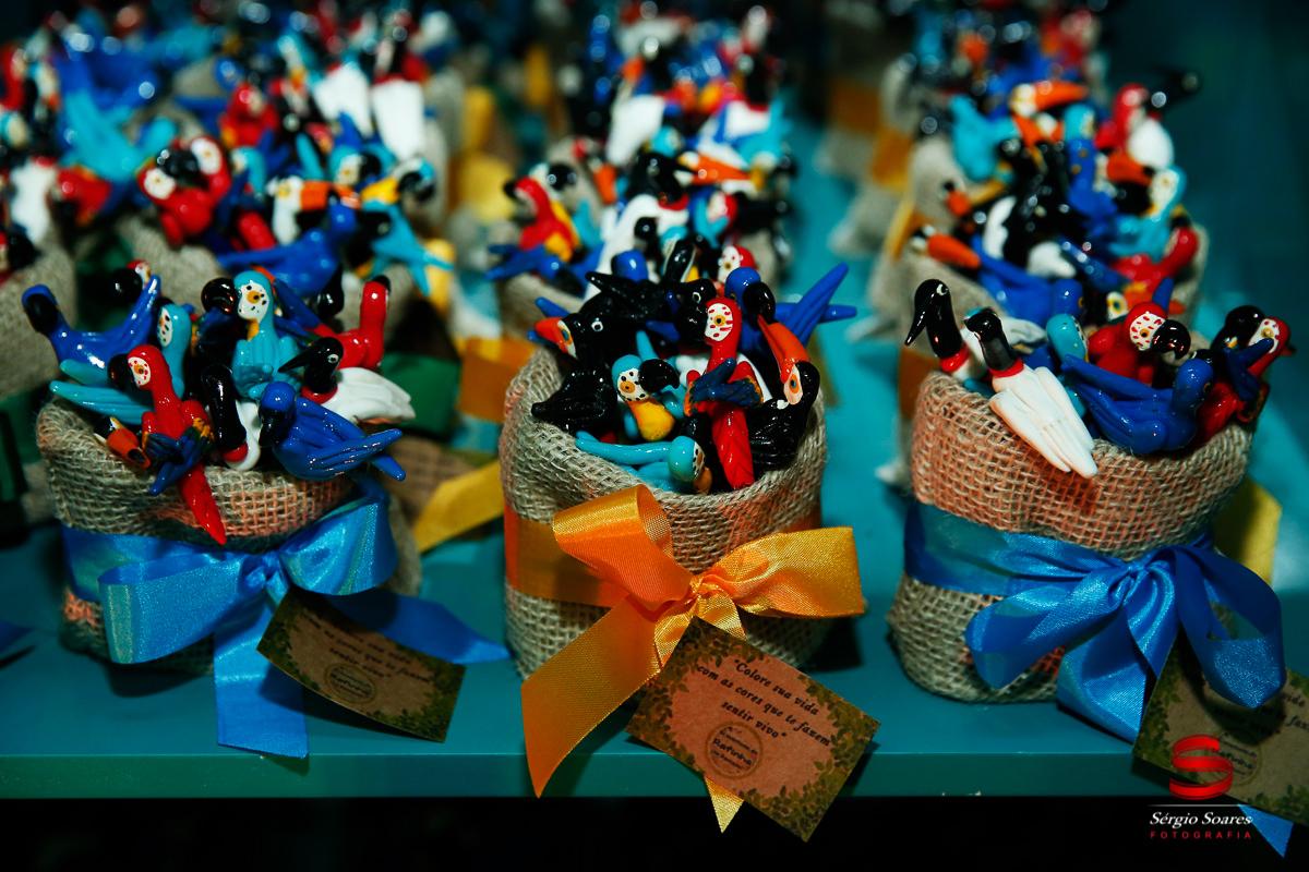 fotografo-fotografia-fotos-cuiaba-sergio-soares-mt-mato-grosso-brasil-aniversario-infantil-rafinha