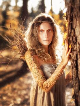 Fantasy de Fairy tales em Black Woods