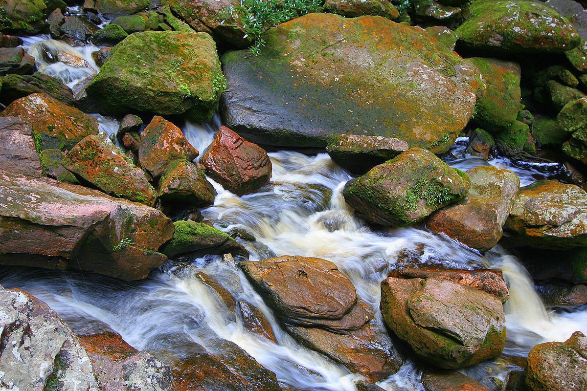agua, natureza, foto, beto oliveira