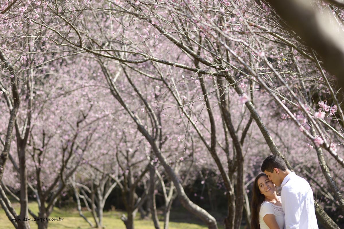 fotografia de casamento, casamento, pre wedding, parque das cereijeiras, dani campos, danica campos fotografia, casais, fotografia, fotografos no litoral, campos do jordao
