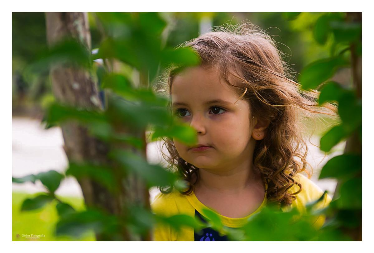 Foto de Piquenique da Betina