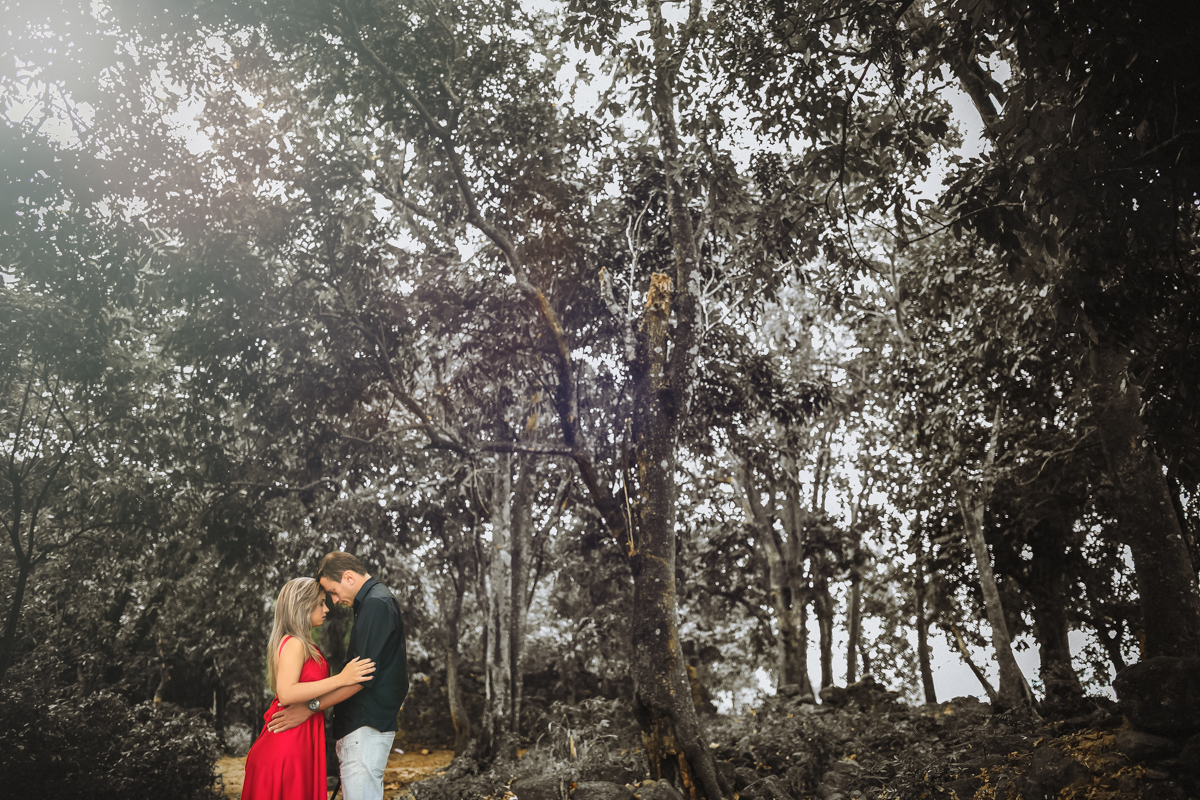 Ensaio romãntico sobre as árvores Rj