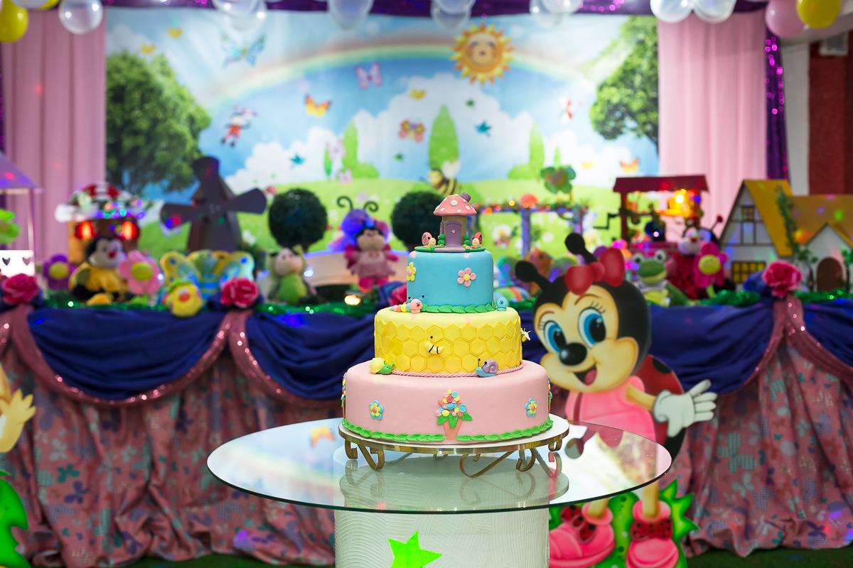 Casa de Festas Mundo Animado das crianças