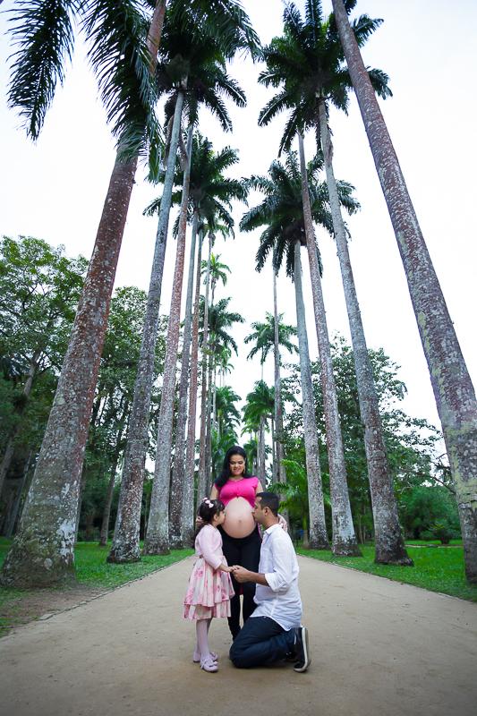 Palmeiras Jardim Botânico