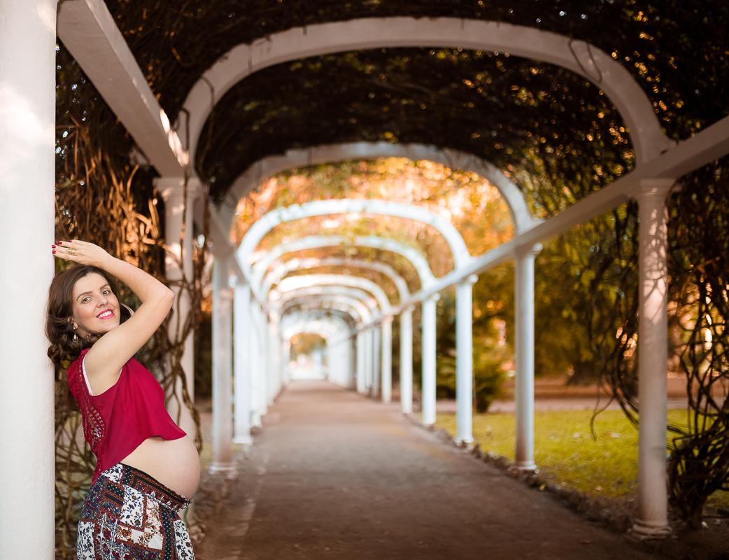 Arcos jardim botânico