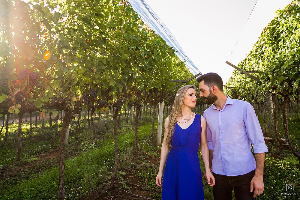 vinicola com uvas na serra