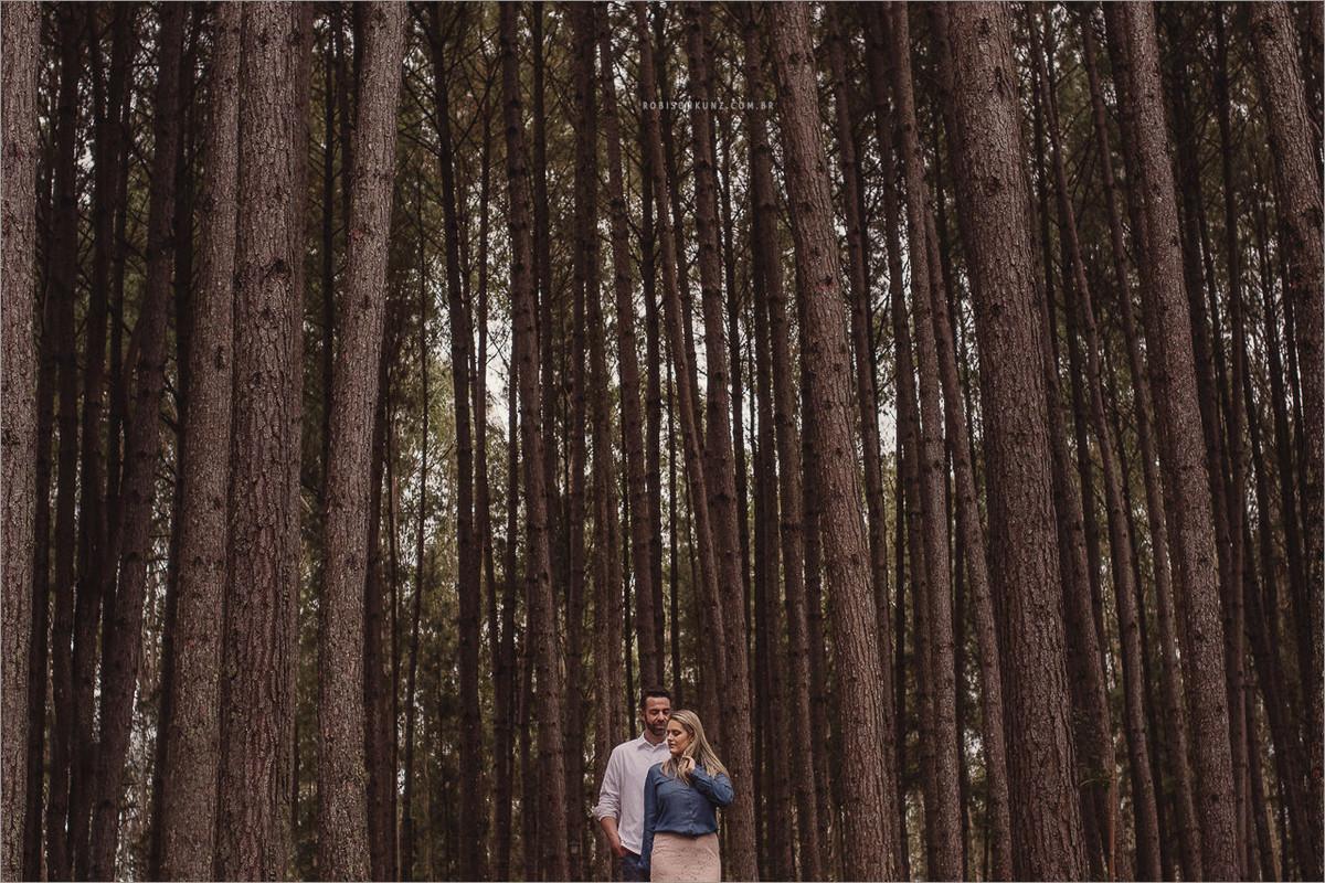 ensaio de noivos nas arvores de pinos