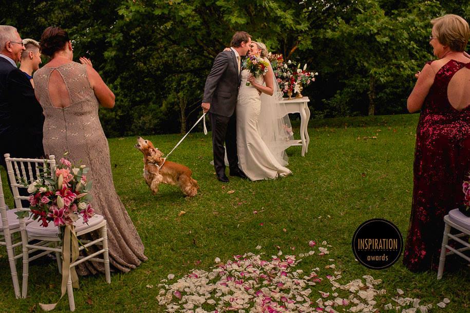 cachorro levando as alianças dos noivos, cachorro do casal participa do casamento - foto de robison kunz premiado entre as melhores fotos de casamento do brasil - foto premiada pela inspiration photographer