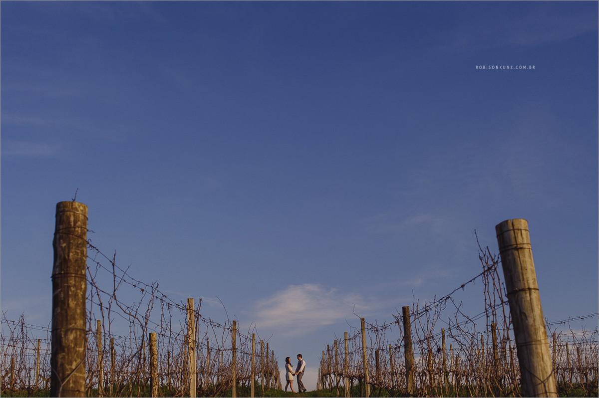 fotos de casal na plantação de uva - noivos no final do dia no meio das parreiras de uva