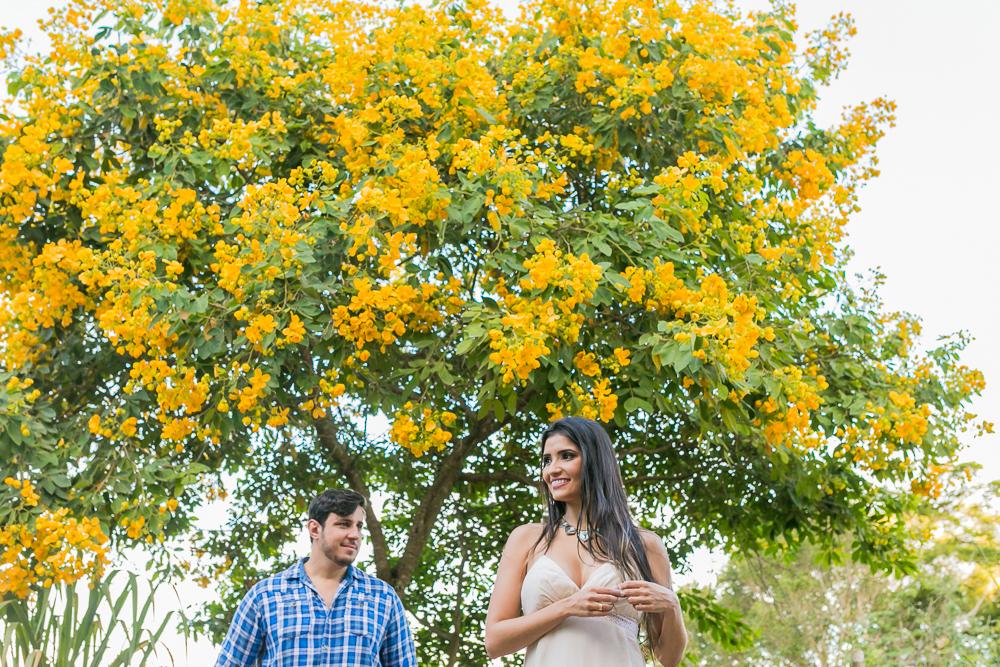 ensaio casal noivos perto da arvore amarela