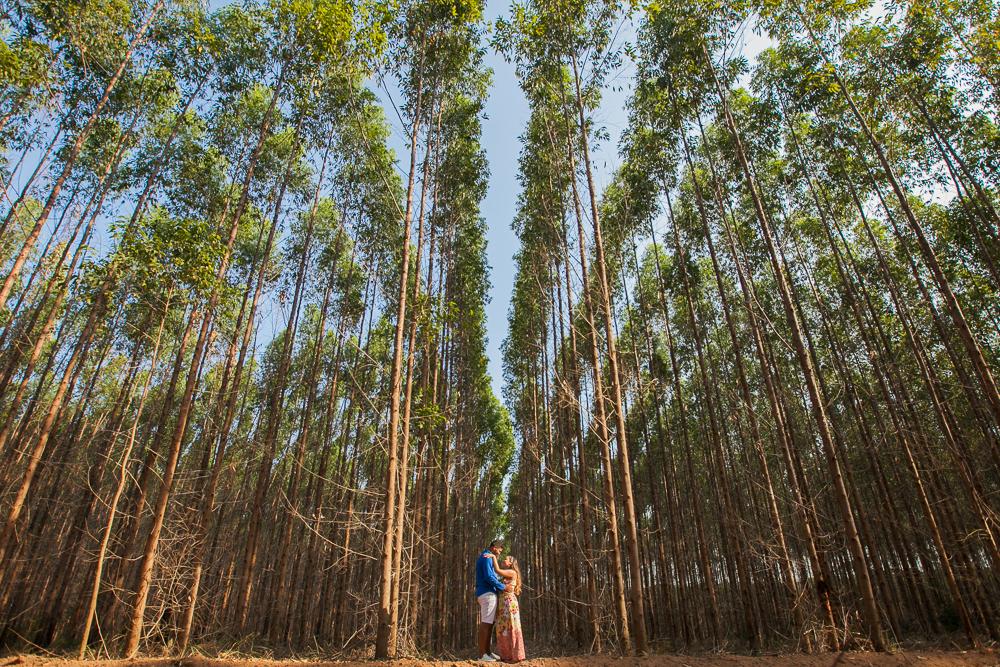 casl nos eucaliptos fotografia de casamento Gvoernador Valadares Josie Nader