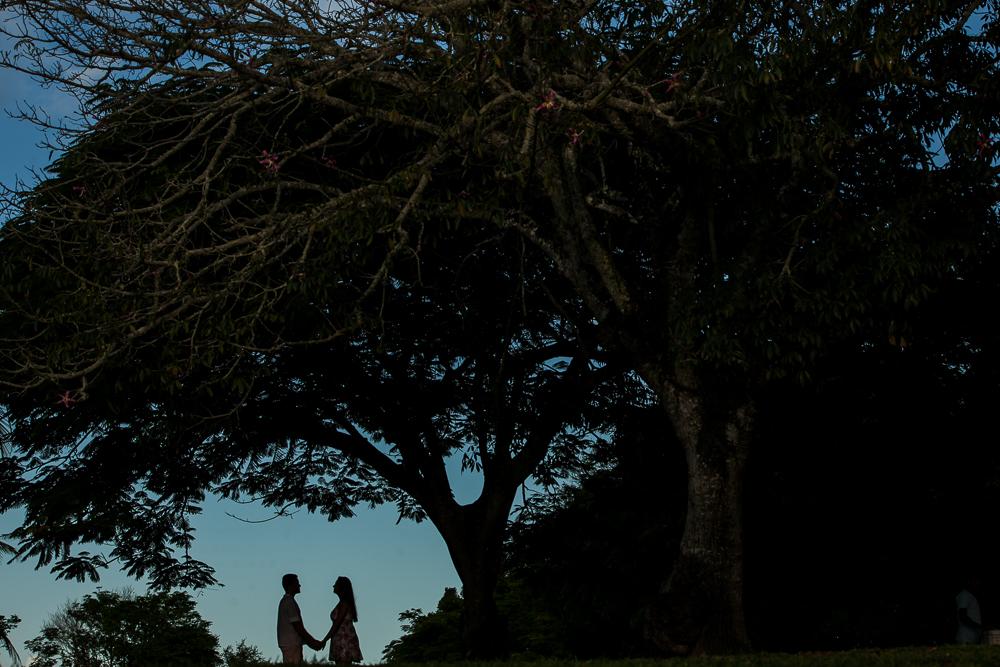 Josie Nader fotografia, noivos no final do dia sob arvore, fotos externas, praia, Trancosos