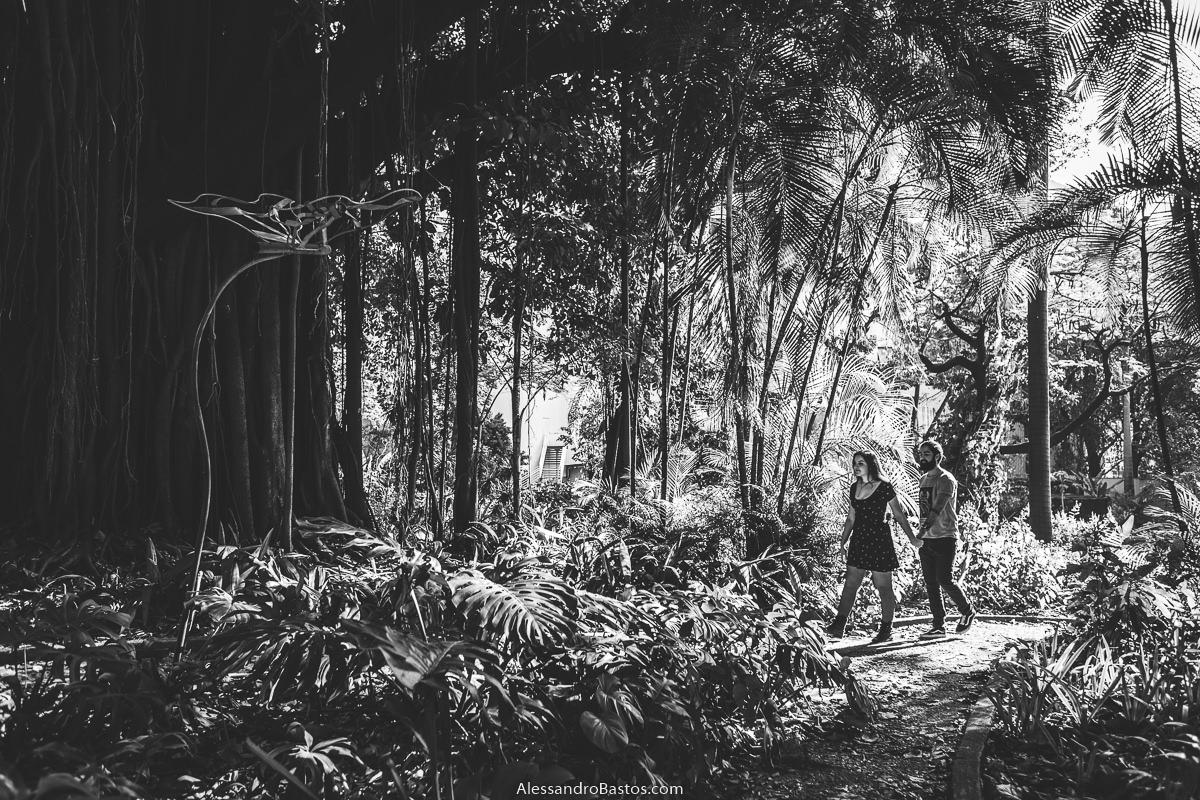 preto e branco lindo com os noivos em sessão de fotografia pré-wedding antes do casamento em bh andando pelo mato com árvores bem grandes