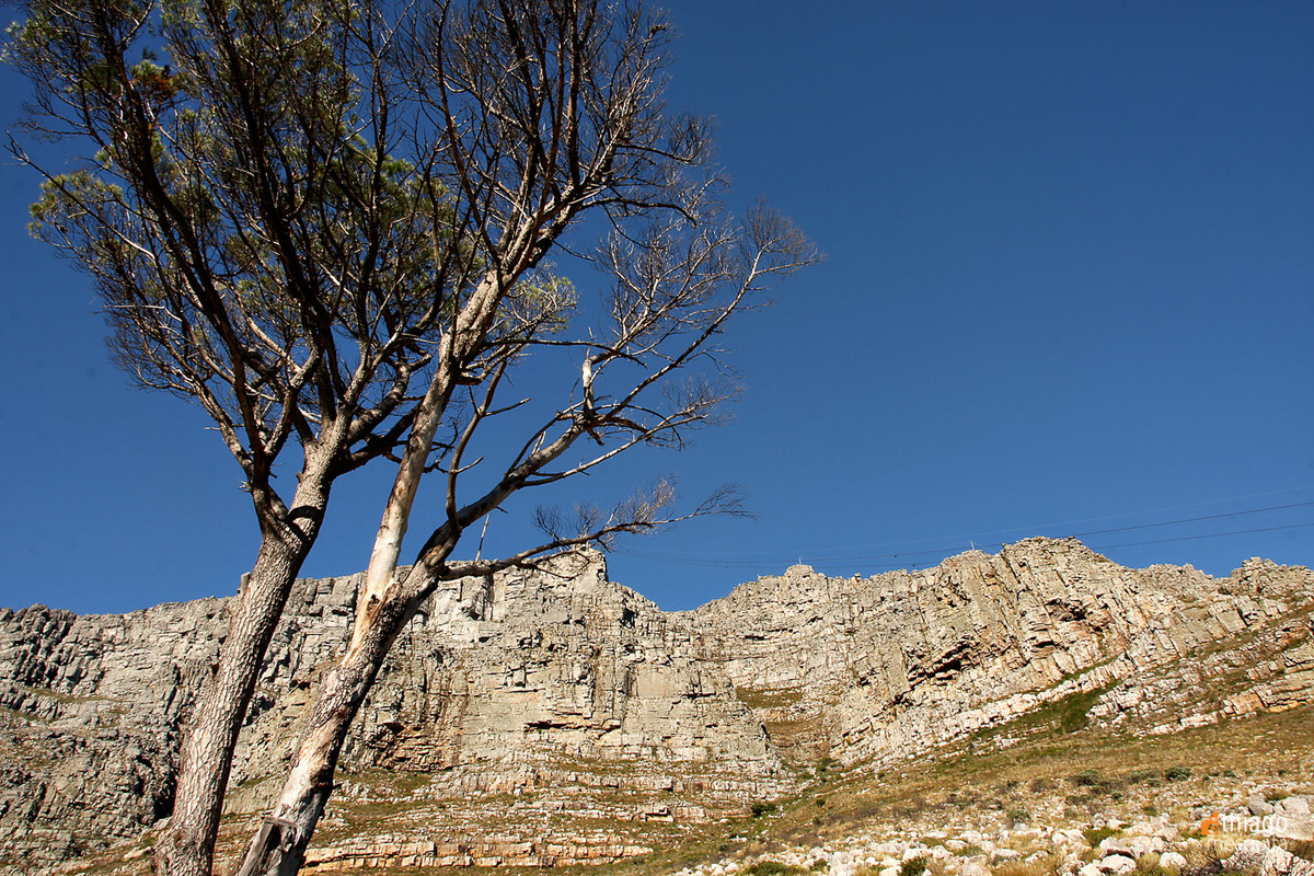 table montain - montanha da mesa - south africa - Africa do sul