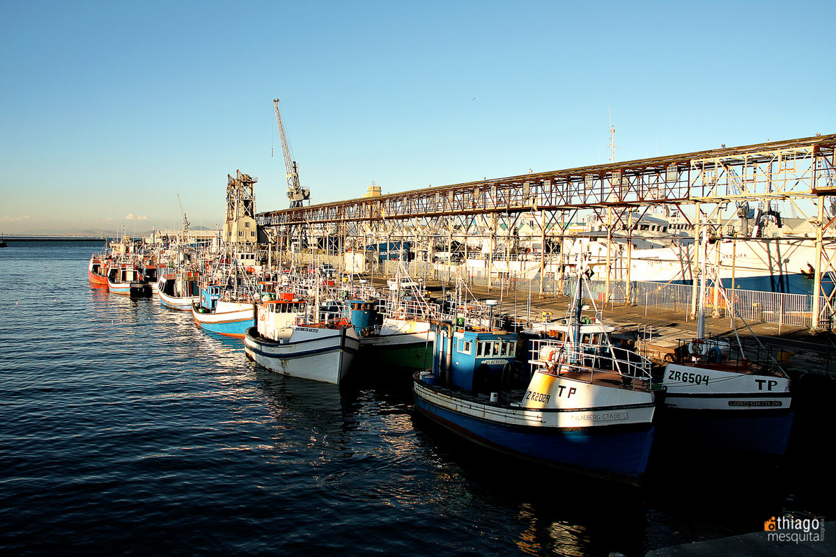 pier south africa - boats