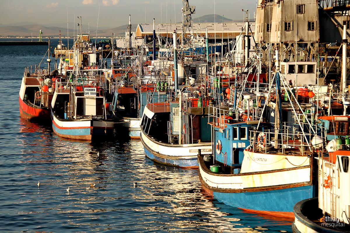 barcos na costa africana
