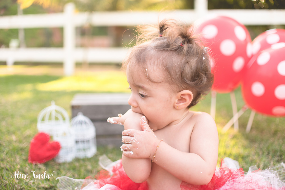 Smash the Cake, destruindo o bolo, ensaio infantil, fotografia infantil, 1 ano, 1 aninho, sítio moitão, cachoeiro de itapemirim