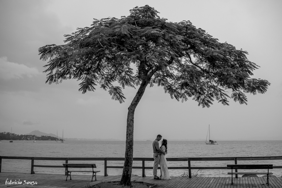romance embaixo da árvore à beira mar