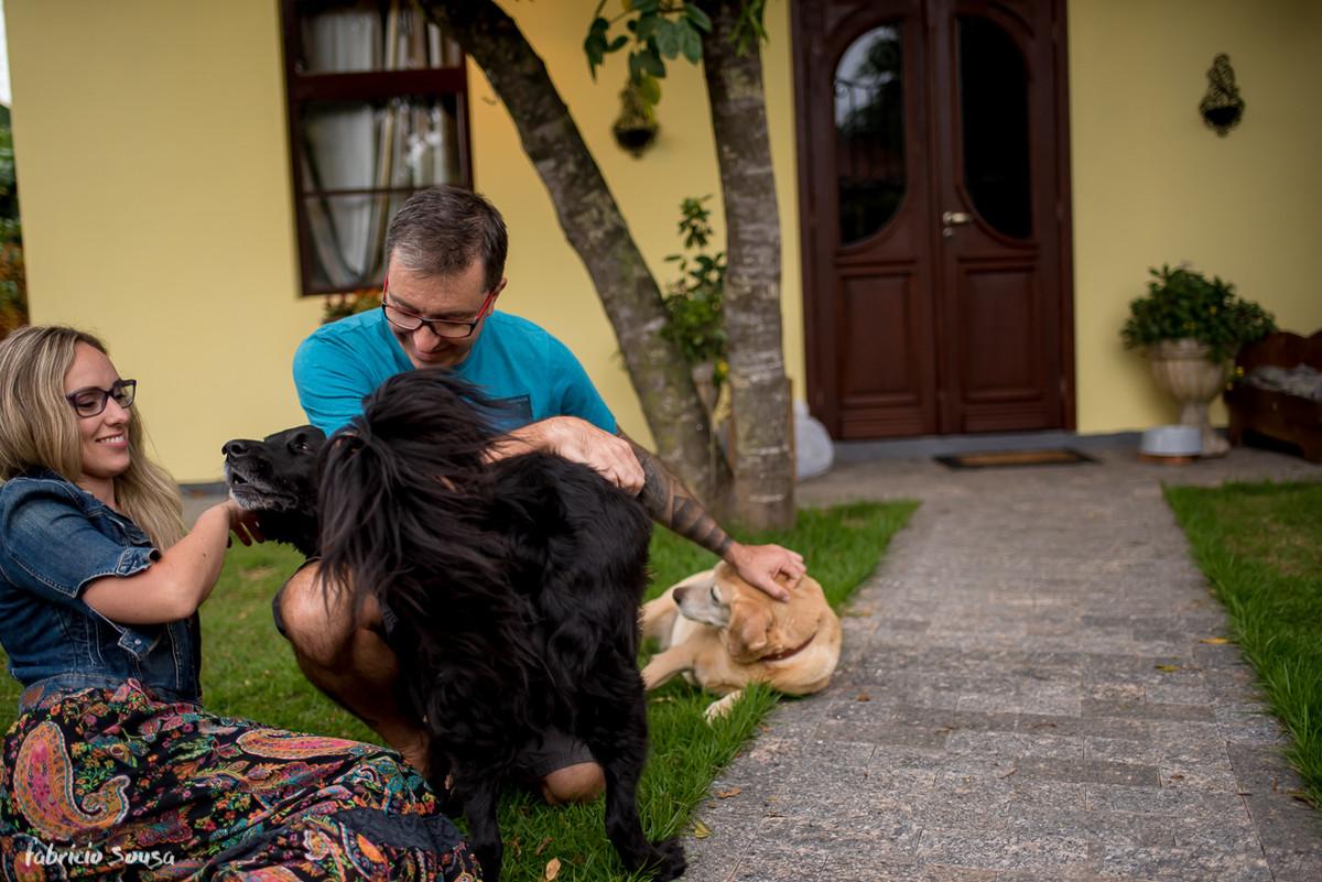 curtindo com os cachorros no gramado de casa