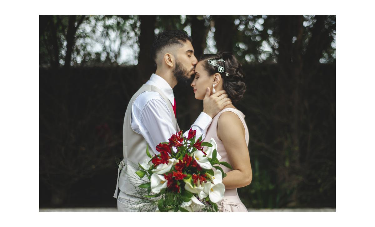 Imagem capa - Vamos casar, e agora? por VIVIANE FONTES DE FREITAS
