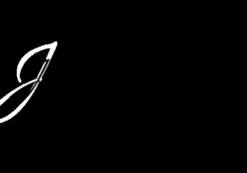 Logotipo de Josi Contarelli