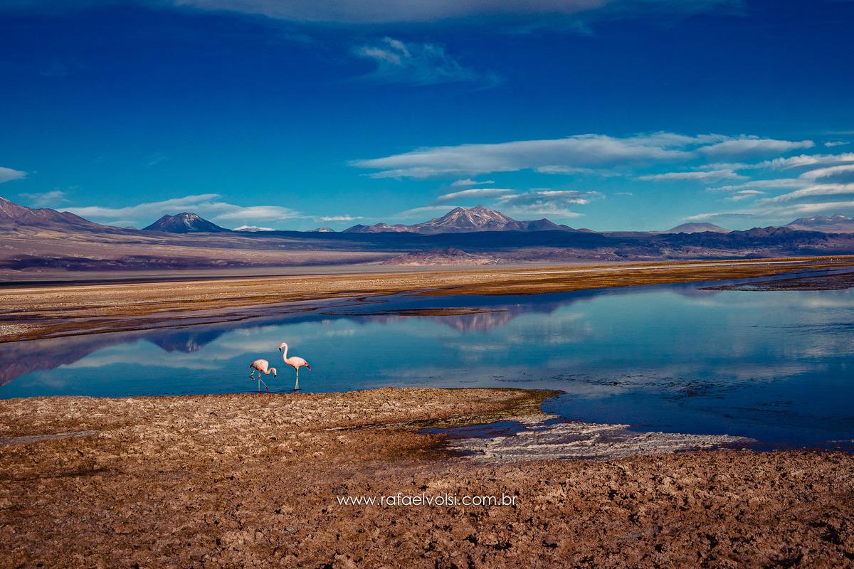 Imagem capa - Viagem para o Atacama por Rafael Volsi